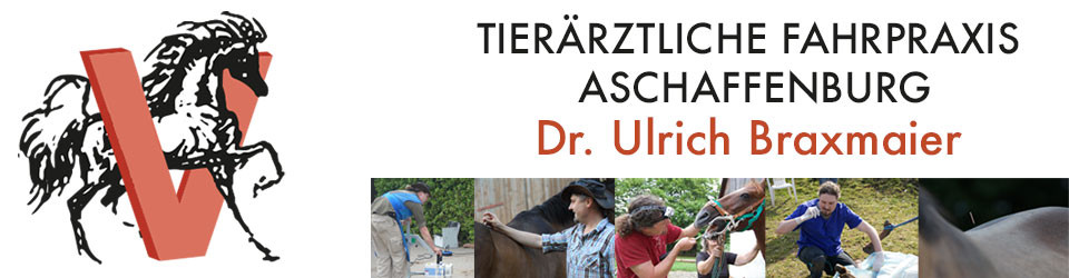 Mobile Tierarztpraxis Dr. Ulrich Braxmaier